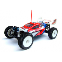 BSD Racing 1/8th Nitro Buggy